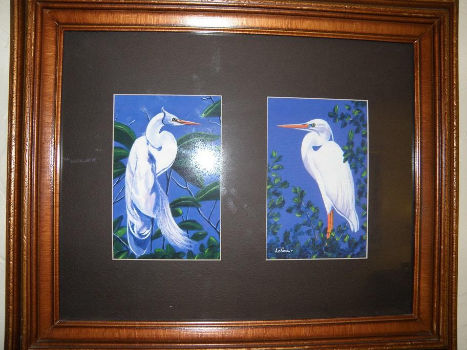 Tropic Egret
